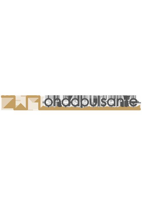 prodotti-professionali-ondapulsante roma logo